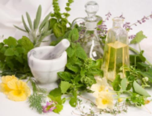 En quoi la phytothérapie peut-elle être utile dans la prise en charge des fibromes?